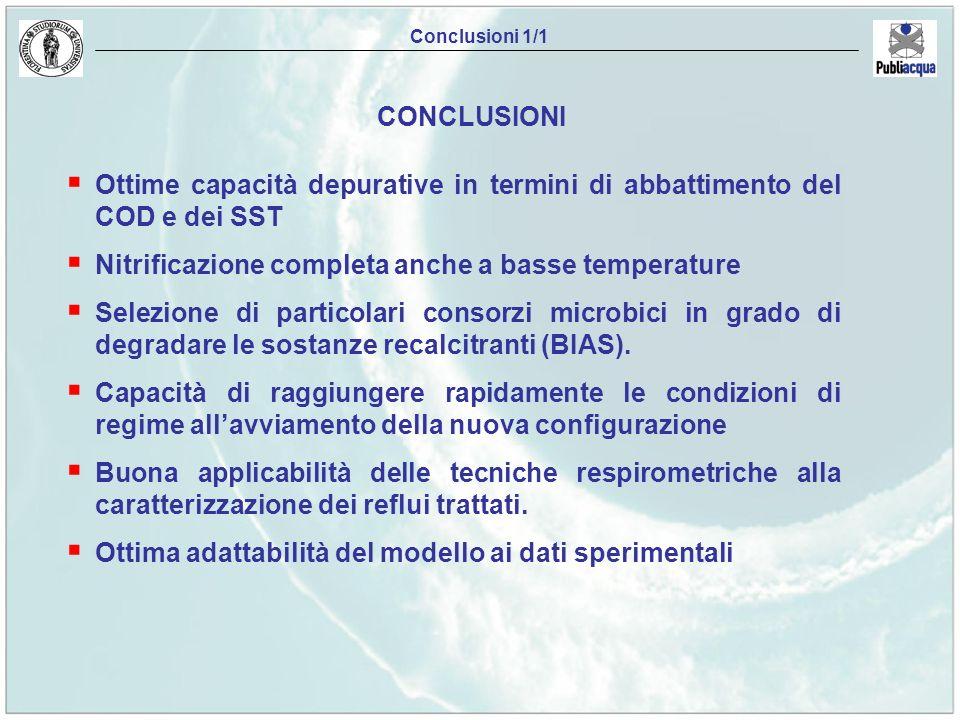 Ottime capacità depurative in termini di abbattimento del COD e dei SST Nitrificazione completa anche a basse temperature Selezione di particolari con