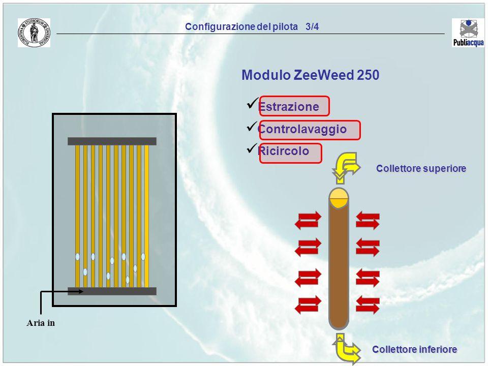 Configurazione del pilota 3/4 Modulo ZeeWeed 250 Estrazione Controlavaggio Ricircolo Collettore superiore Collettore inferiore Aria in