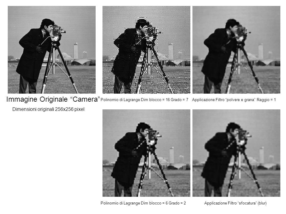Immagine Originale Camera Polinomio di Lagrange Dim blocco = 16 Grado = 7Applicazione Filtro polvere e grana Raggio = 1 Polinomio di Lagrange Dim blocco = 6 Grado = 2Applicazione Filtro sfocatura (blur) Dimensioni originali 256x256 pixel