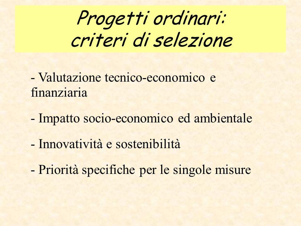Progetti ordinari: modalità di finanziamento Percentuale di finanziamento pubblico variabile, a seconda delle misure: - 60 (trasporti) - 70 (PMI, ICT) - 80 (cultura, turismo, formazione, processi di cooperazione) - 90 (rischi, ambiente, progetti a carattere sociale)