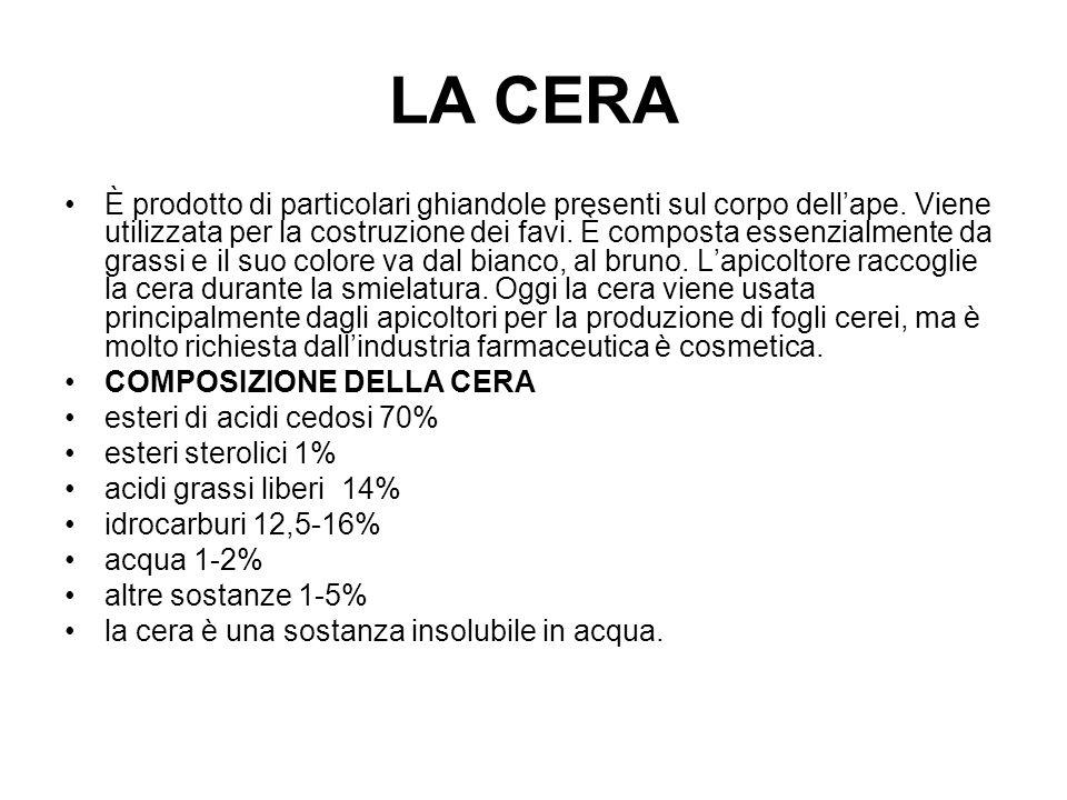 LA CERA È prodotto di particolari ghiandole presenti sul corpo dellape. Viene utilizzata per la costruzione dei favi. È composta essenzialmente da gra