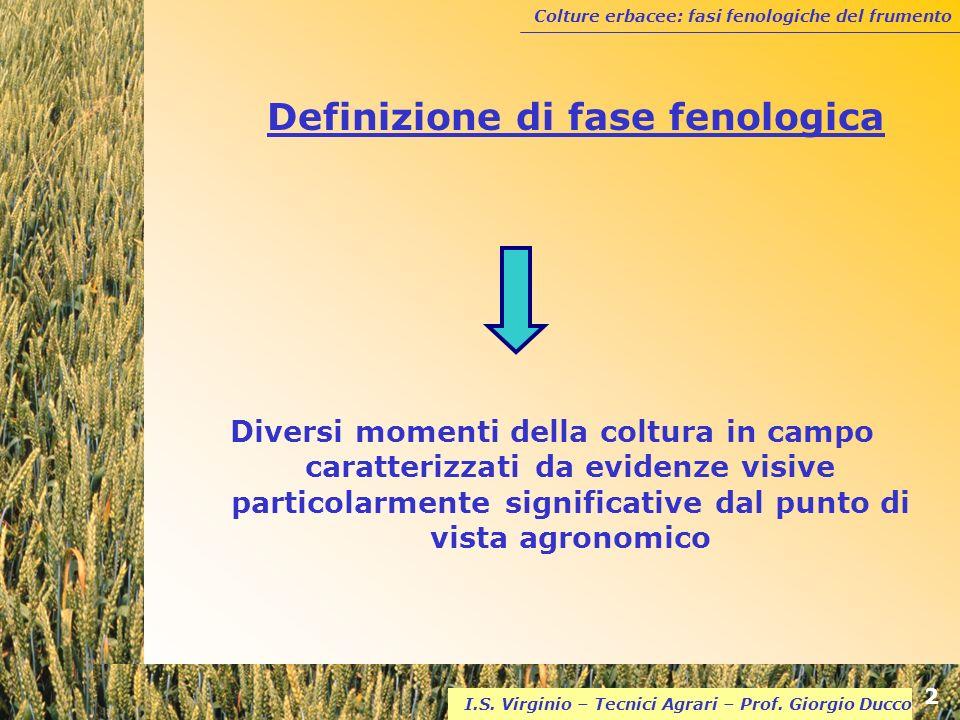 Colture erbacee: fasi fenologiche del frumento 2 I.S. Virginio – Tecnici Agrari – Prof. Giorgio Ducco Definizione di fase fenologica Diversi momenti d