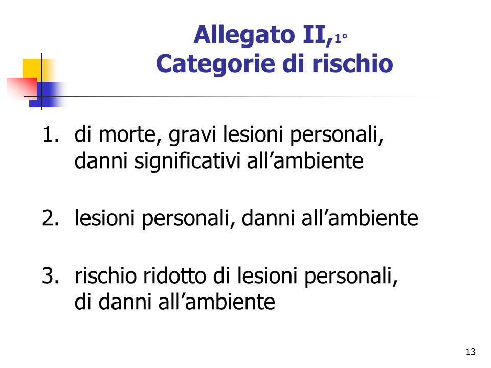13 Allegato II, 1° Categorie di rischio 1.di morte, gravi lesioni personali, danni significativi allambiente 2.lesioni personali, danni allambiente 3.