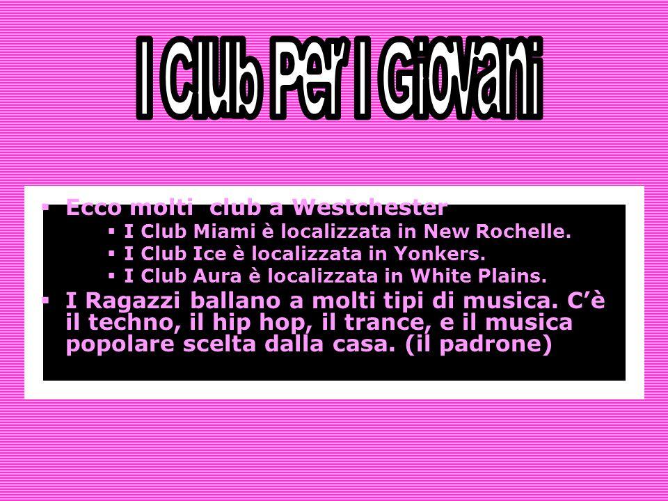 Ecco molti club a Westchester I Club Miami è localizzata in New Rochelle.