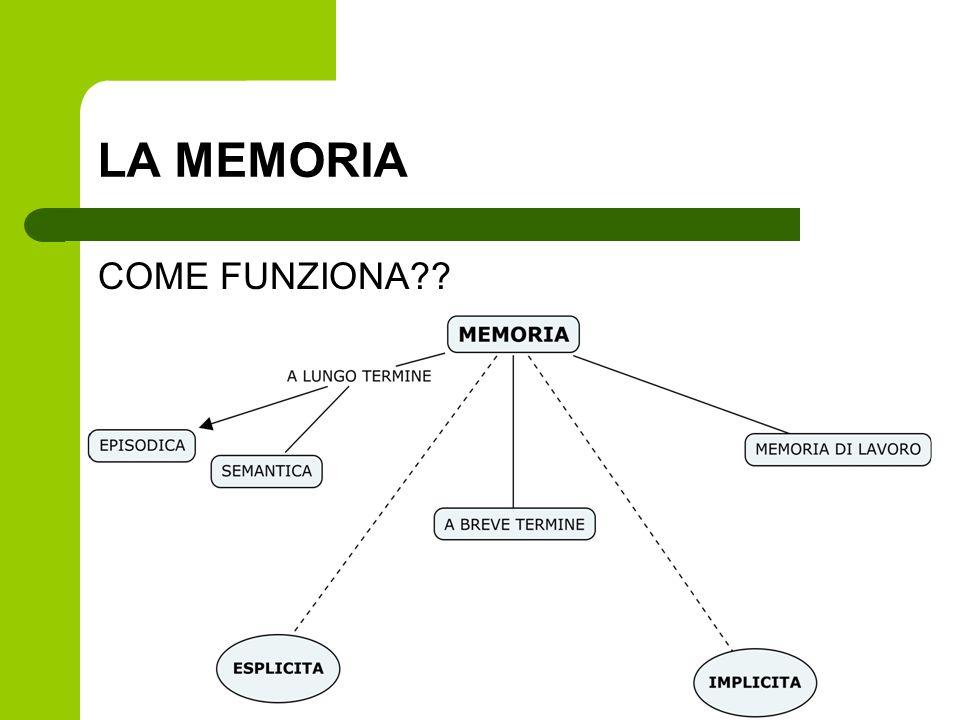 LA MEMORIA COME FUNZIONA??