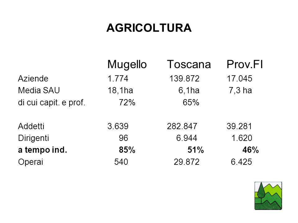 AGRICOLTURA MugelloToscanaProv.FI Aziende1.774 139.87217.045 Media SAU18,1ha 6,1ha 7,3 ha di cui capit.