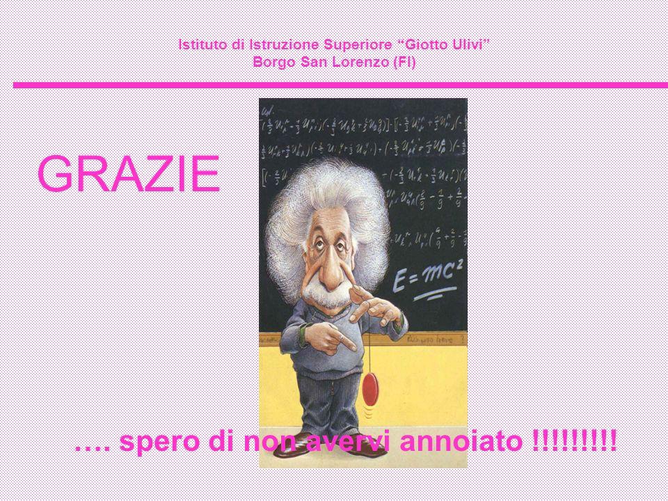Istituto di Istruzione Superiore Giotto Ulivi Borgo San Lorenzo (FI) GRAZIE …. spero di non avervi annoiato !!!!!!!!!