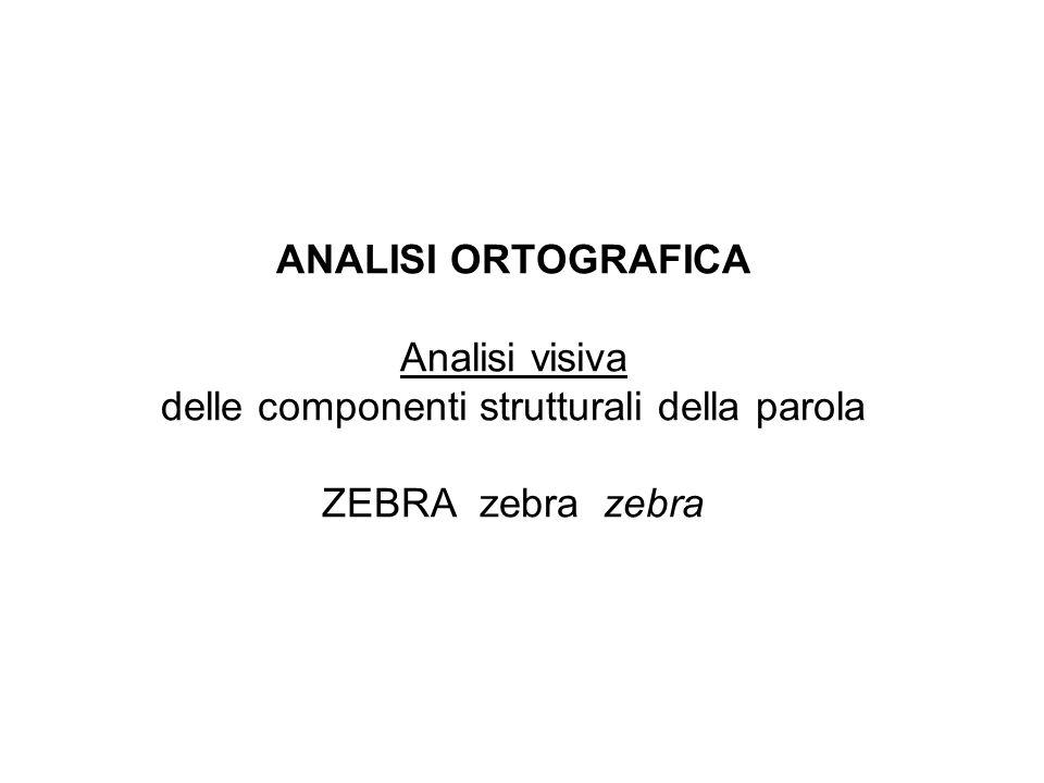 ANALISI ORTOGRAFICA Analisi visiva delle componenti strutturali della parola ZEBRA zebra zebra