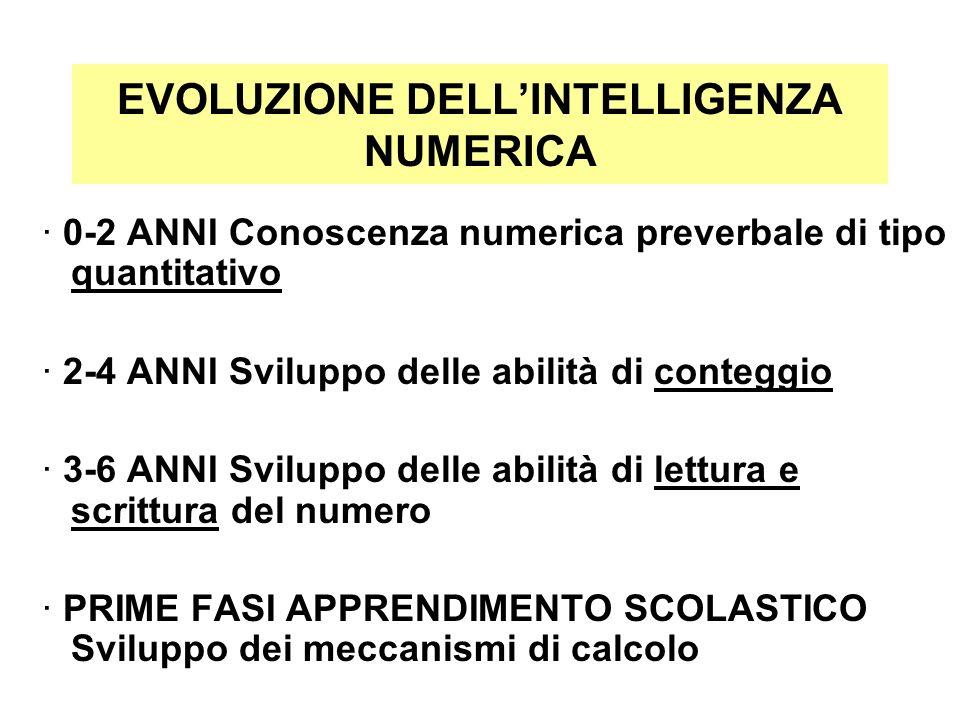 EVOLUZIONE DELLINTELLIGENZA NUMERICA · 0-2 ANNI Conoscenza numerica preverbale di tipo quantitativo · 2-4 ANNI Sviluppo delle abilità di conteggio · 3