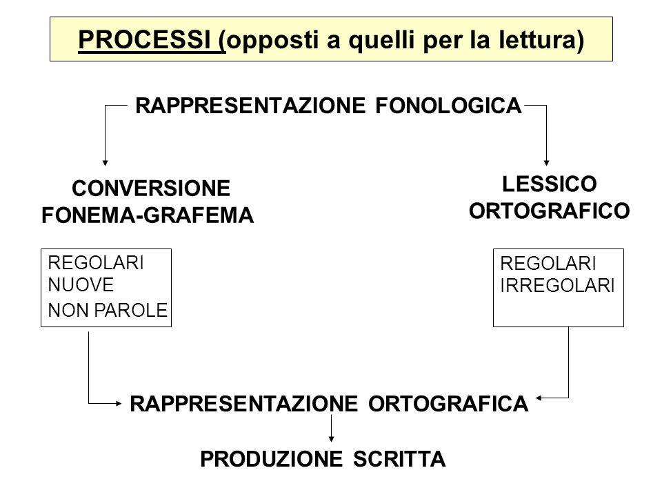 PROCESSI (opposti a quelli per la lettura) RAPPRESENTAZIONE FONOLOGICA CONVERSIONE FONEMA-GRAFEMA LESSICO ORTOGRAFICO REGOLARI NUOVE NON PAROLE REGOLA