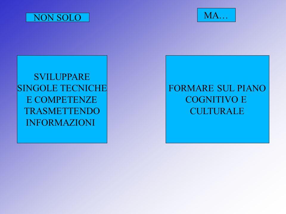 Competenze personali: Riferite ad attitudini, ad atteggiamenti, allautovalutazione, alla collaborazione…..