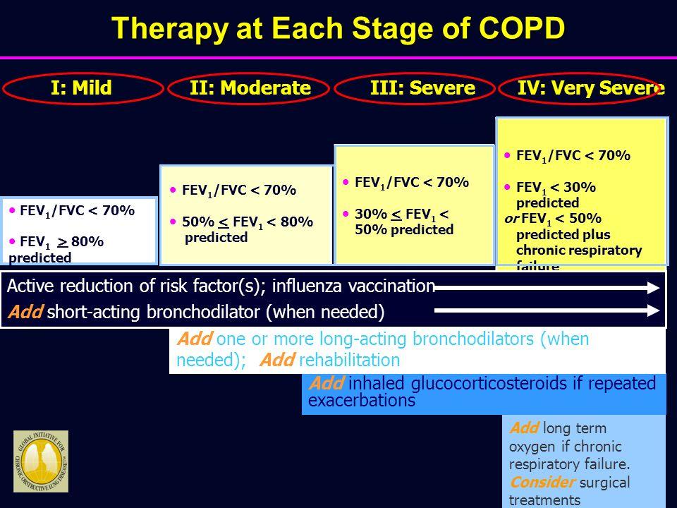 Aggiornamento concetti generali sulla componente respiratoria della BPCO Leonardo M.