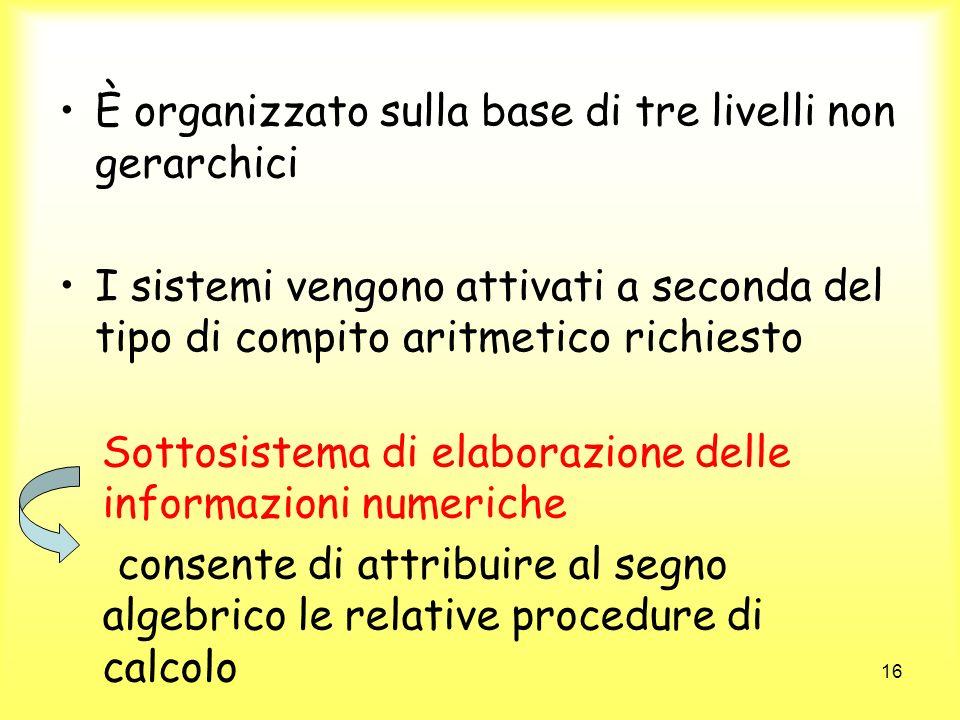 16 È organizzato sulla base di tre livelli non gerarchici I sistemi vengono attivati a seconda del tipo di compito aritmetico richiesto Sottosistema d