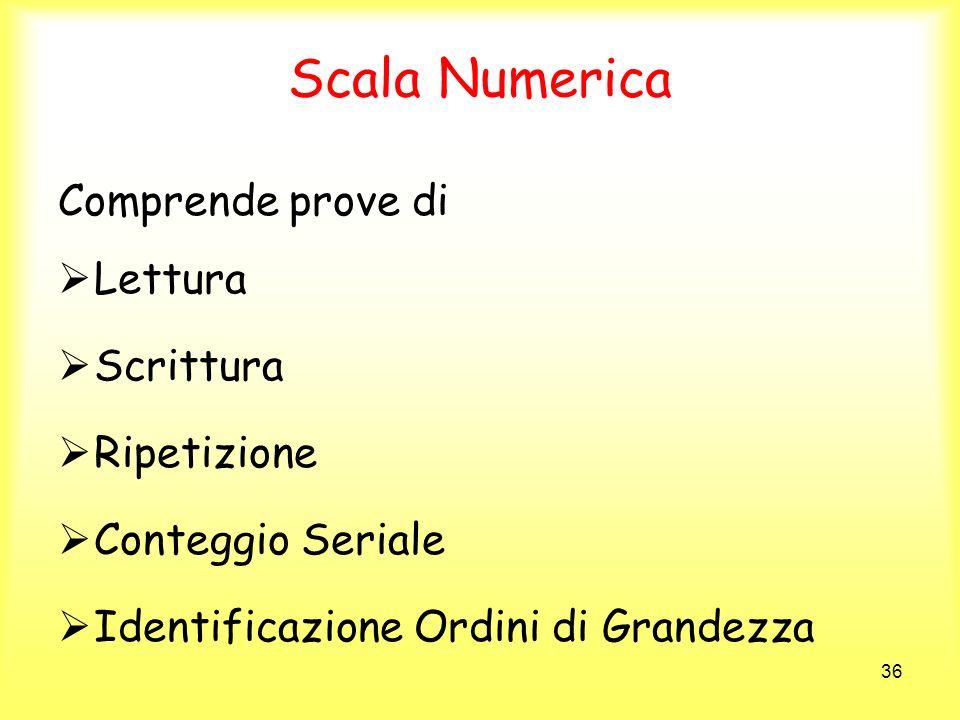 36 Scala Numerica Comprende prove di Lettura Scrittura Ripetizione Conteggio Seriale Identificazione Ordini di Grandezza