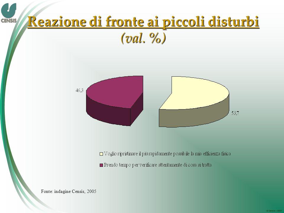 © Censis 2007 Reazione di fronte ai piccoli disturbi (val. %) Fonte: indagine Censis, 2005
