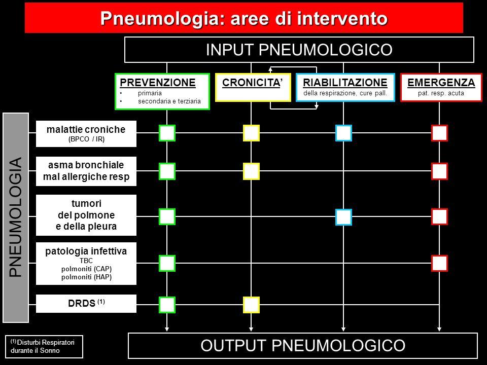 OUTPUT PNEUMOLOGICO INPUT PNEUMOLOGICO PNEUMOLOGIA RIABILITAZIONE della respirazione, cure pall. PREVENZIONE primaria secondaria e terziaria CRONICITA