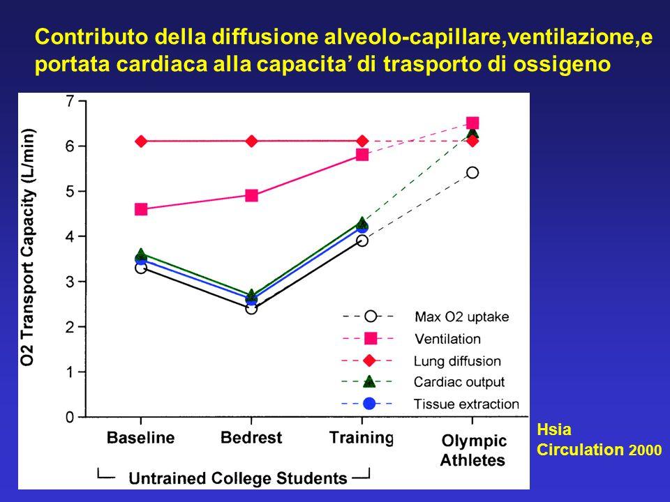 Contributo della diffusione alveolo-capillare,ventilazione,e portata cardiaca alla capacita di trasporto di ossigeno Hsia Circulation 2000