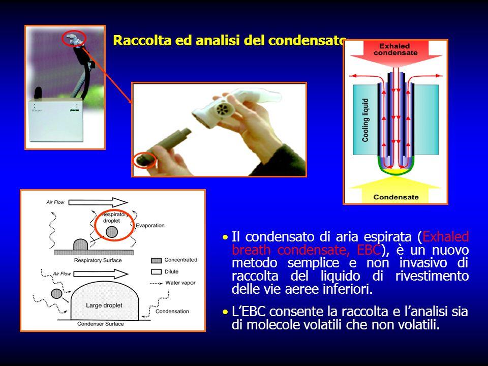 Raccolta ed analisi del condensato Il condensato di aria espirata (Exhaled breath condensate, EBC), è un nuovo metodo semplice e non invasivo di raccolta del liquido di rivestimento delle vie aeree inferiori.