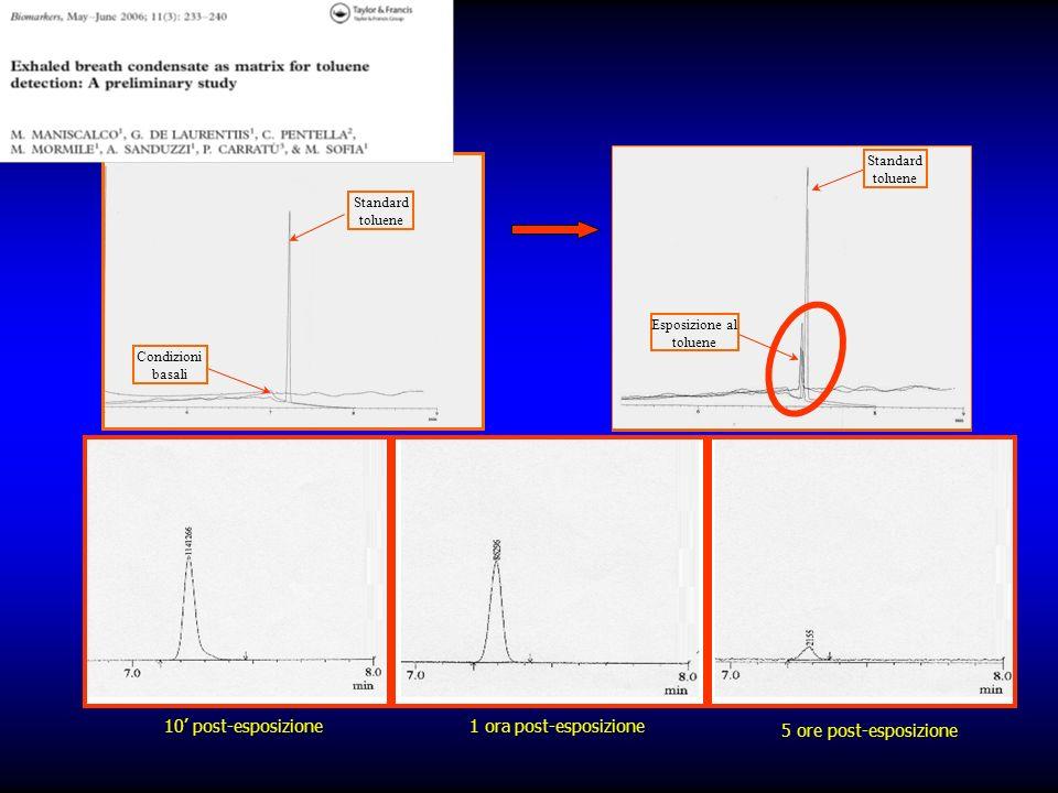 10 post-esposizione 1 ora post-esposizione 5 ore post-esposizione Condizioni basali Standard toluene Esposizione al toluene Standard toluene