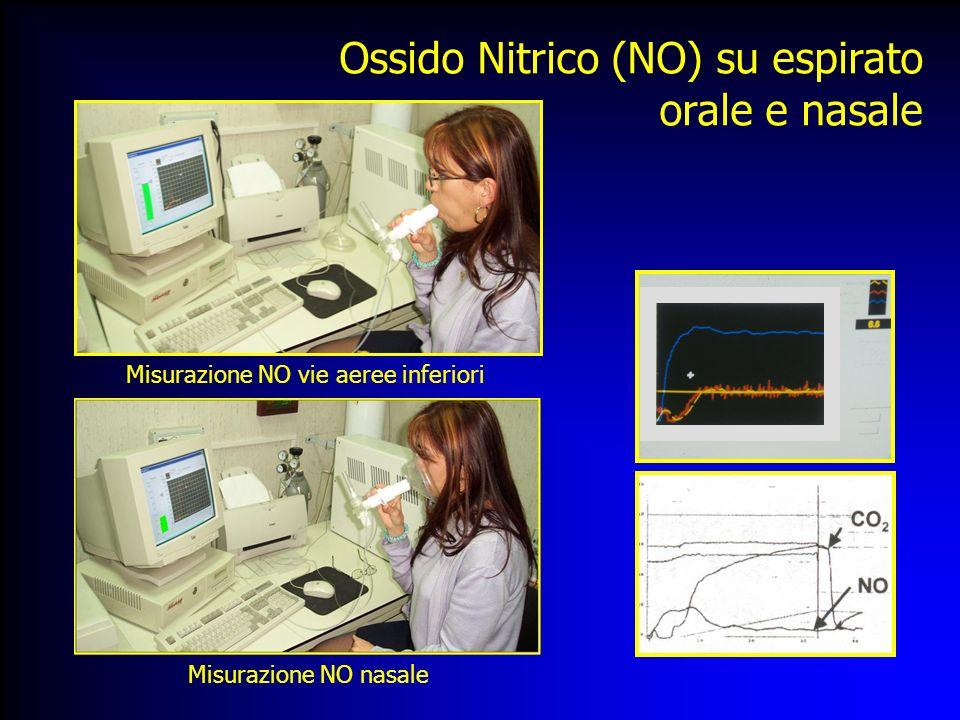 Misurazione NO vie aeree inferiori Misurazione NO nasale Ossido Nitrico (NO) su espirato orale e nasale