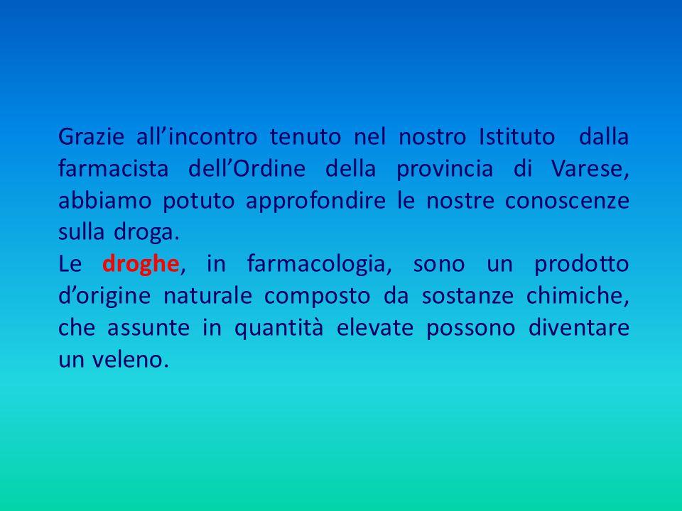 Grazie allincontro tenuto nel nostro Istituto dalla farmacista dellOrdine della provincia di Varese, abbiamo potuto approfondire le nostre conoscenze