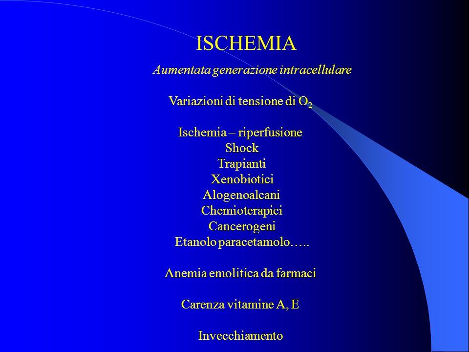 ISCHEMIA Aumentata generazione intracellulare Variazioni di tensione di O 2 Ischemia – riperfusione Shock Trapianti Xenobiotici Alogenoalcani Chemioterapici Cancerogeni Etanolo paracetamolo…..