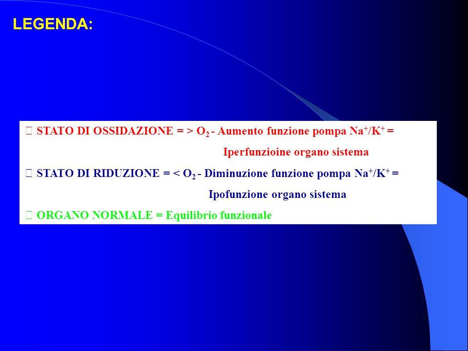LEGENDA:  STATO DI OSSIDAZIONE = > O 2 - Aumento funzione pompa Na + /K + = Iperfunzioine organo sistema  STATO DI RIDUZIONE = < O 2 - Diminuzione funzione pompa Na + /K + = Ipofunzione organo sistema  ORGANO NORMALE = Equilibrio funzionale