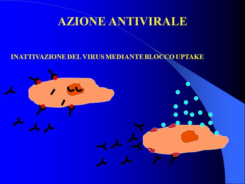 AZIONE ANTIVIRALE INATTIVAZIONE DEL VIRUS MEDIANTE BLOCCO UPTAKE