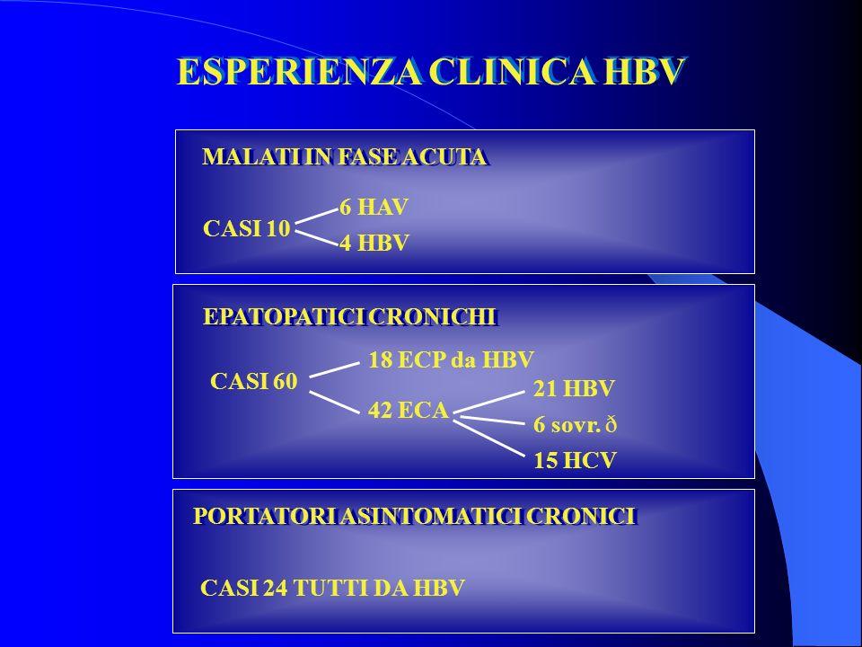 ESPERIENZA CLINICA HBV MALATI IN FASE ACUTA 6 HAV CASI 10 4 HBV EPATOPATICI CRONICHI 18 ECP da HBV CASI 60 42 ECA 21 HBV 6 sovr.