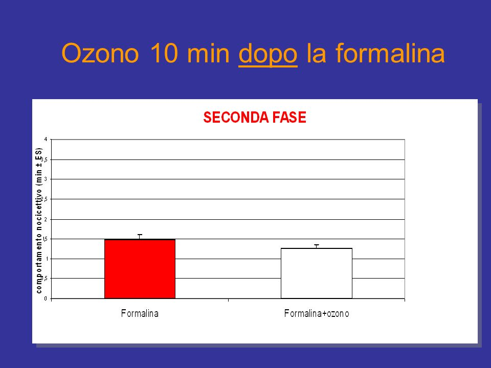 Ozono 10 min dopo la formalina