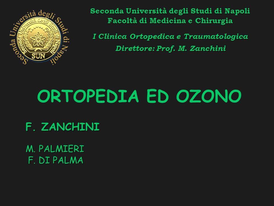 Seconda Università degli Studi di Napoli Facoltà di Medicina e Chirurgia I Clinica Ortopedica e Traumatologica Direttore: Prof.