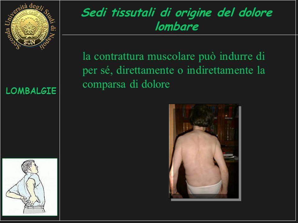 la contrattura muscolare può indurre di per sé, direttamente o indirettamente la comparsa di dolore LOMBALGIE Sedi tissutali di origine del dolore lombare