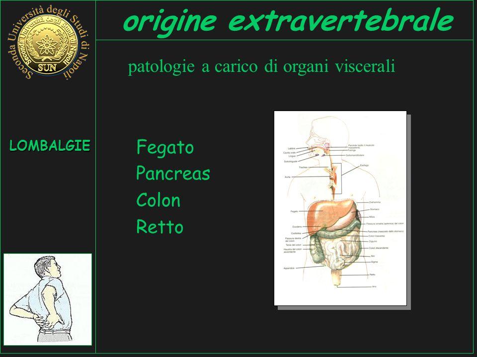 Fegato Pancreas Colon Retto patologie a carico di organi viscerali LOMBALGIE