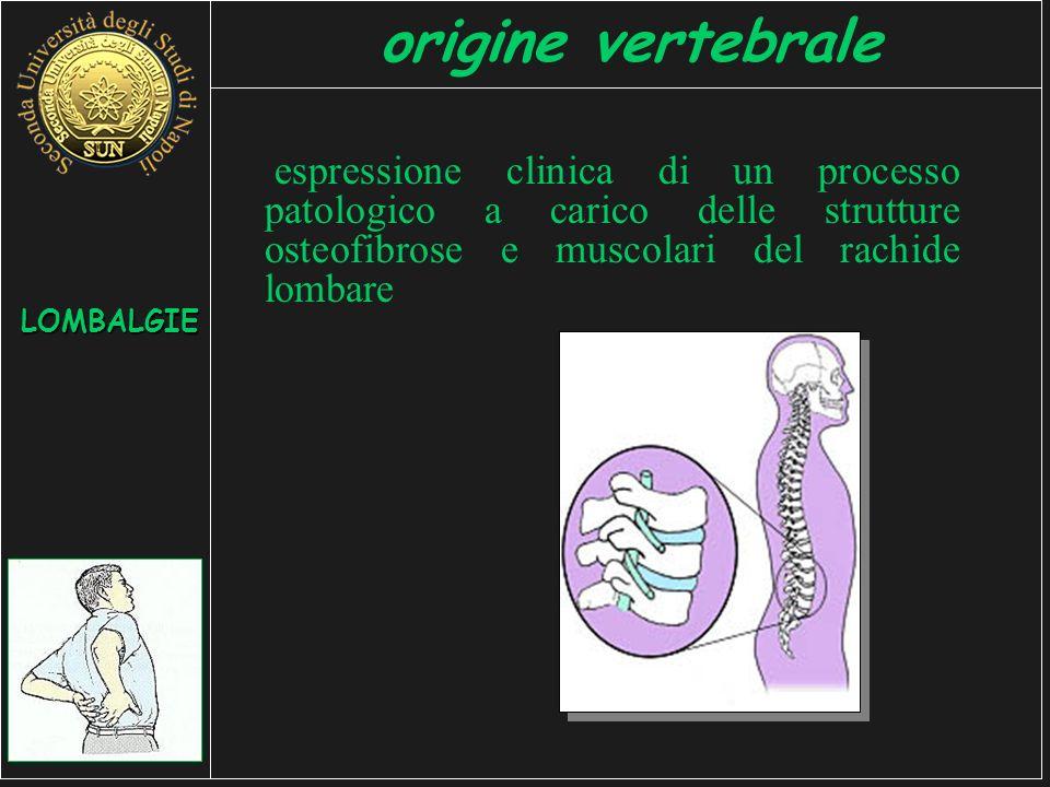 origine vertebrale espressione clinica di un processo patologico a carico delle strutture osteofibrose e muscolari del rachide lombare LOMBALGIE