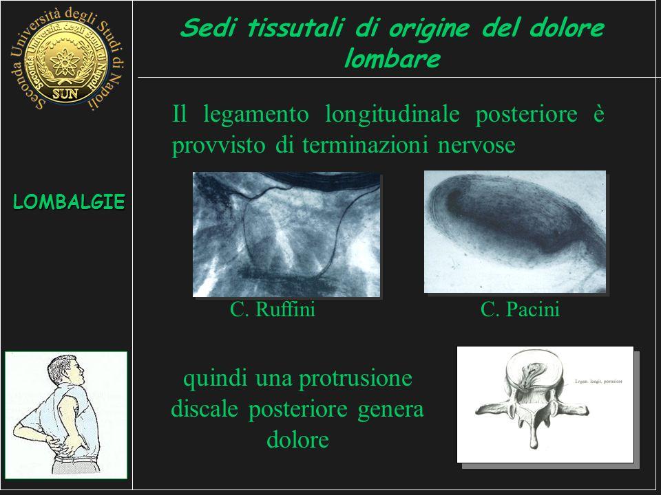 Il legamento longitudinale posteriore è provvisto di terminazioni nervose quindi una protrusione discale posteriore genera dolore LOMBALGIE Sedi tissutali di origine del dolore lombare C.