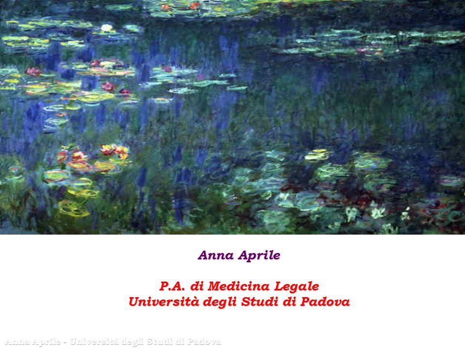 Anna Aprile P.A.