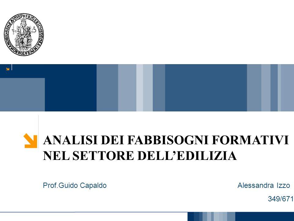 Carmen Cirulli 1 ANALISI DEI FABBISOGNI FORMATIVI NEL SETTORE DELLEDILIZIA Prof.Guido Capaldo Alessandra Izzo 349/671