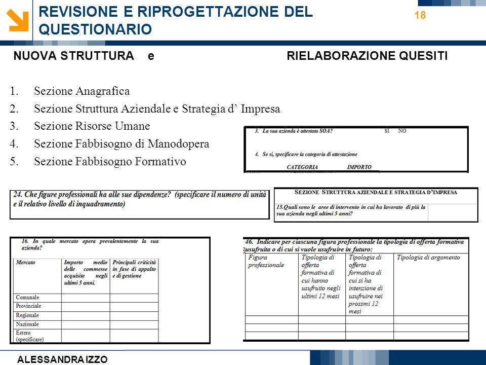 Carmen Cirulli 18 REVISIONE E RIPROGETTAZIONE DEL QUESTIONARIO ALESSANDRA IZZO NUOVA STRUTTURA e RIELABORAZIONE QUESITI 1.Sezione Anagrafica 2.Sezione