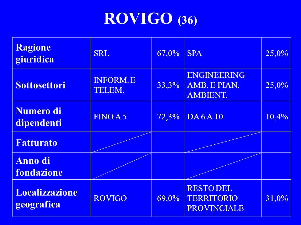 ROVIGO (36) Ragione giuridica SRL67,0%SPA25,0% Sottosettori INFORM. E TELEM. 33,3% ENGINEERING AMB. E PIAN. AMBIENT. 25,0% Numero di dipendenti FINO A