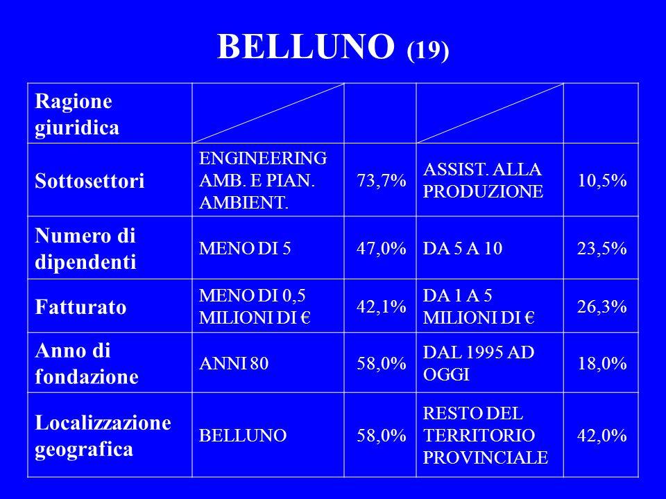 BELLUNO (19) Ragione giuridica Sottosettori ENGINEERING AMB. E PIAN. AMBIENT. 73,7% ASSIST. ALLA PRODUZIONE 10,5% Numero di dipendenti MENO DI 547,0%D