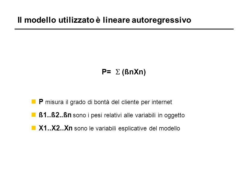 Il modello utilizzato è lineare autoregressivo P= (ßnXn) nP misura il grado di bontà del cliente per internet nß1..ß2..ßn sono i pesi relativi alle variabili in oggetto nX1..X2..Xn sono le variabili esplicative del modello