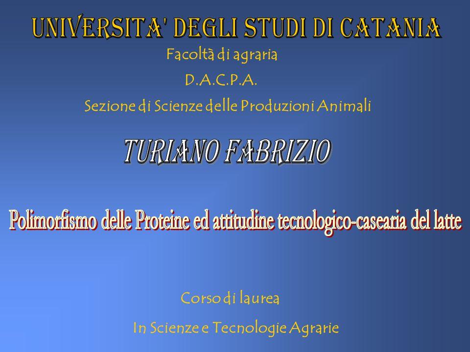 Facoltà di agraria D.A.C.P.A. Sezione di Scienze delle Produzioni Animali Corso di laurea In Scienze e Tecnologie Agrarie