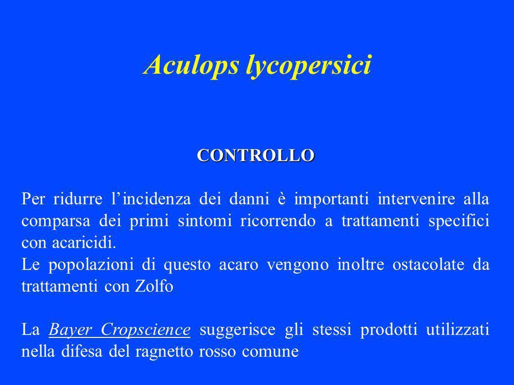 Aculops lycopersici CONTROLLO Per ridurre lincidenza dei danni è importanti intervenire alla comparsa dei primi sintomi ricorrendo a trattamenti specifici con acaricidi.