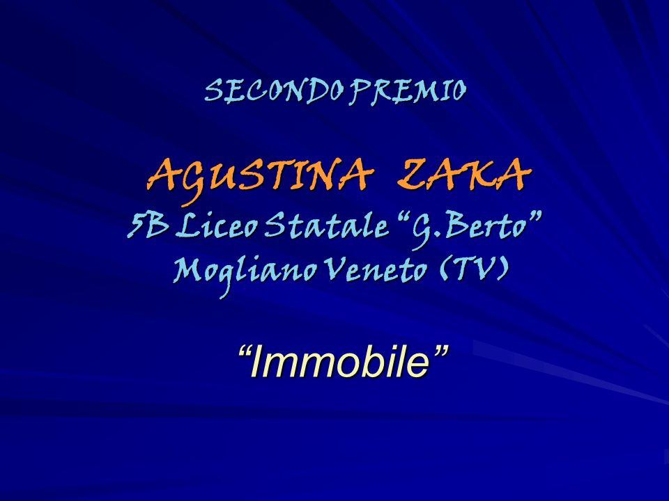 SECONDO PREMIO AGUSTINA ZAKA AGUSTINA ZAKA 5B Liceo Statale G.Berto Mogliano Veneto (TV) Mogliano Veneto (TV) Immobile Immobile