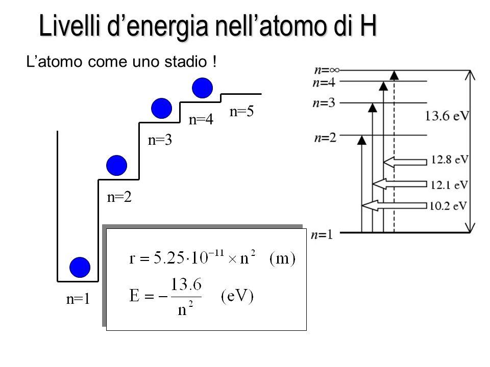 n=1 n=2 n=3 n=4 n=5 Livelli denergia nellatomo di H Latomo come uno stadio !