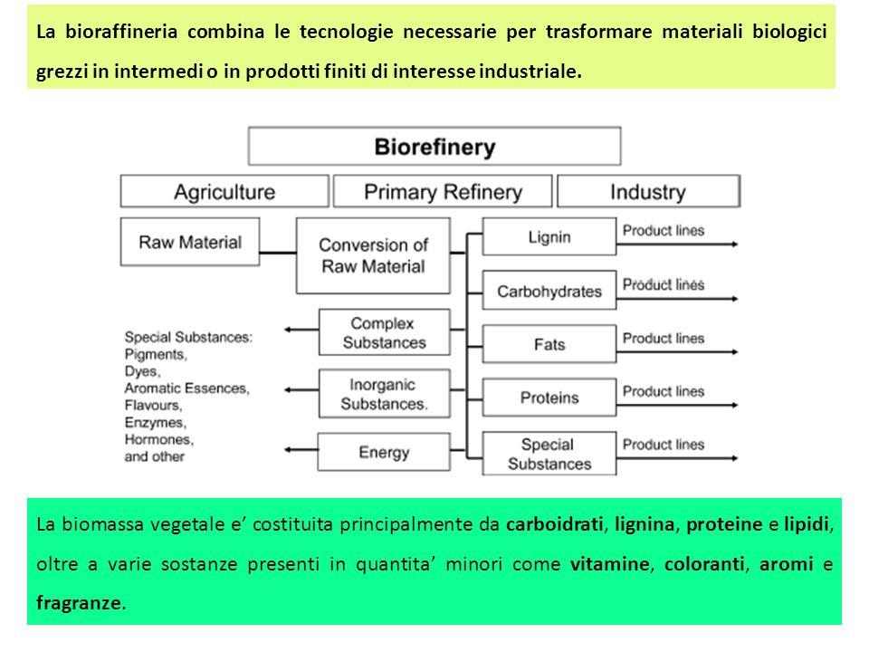 La bioraffineria combina le tecnologie necessarie per trasformare materiali biologici grezzi in intermedi o in prodotti finiti di interesse industrial