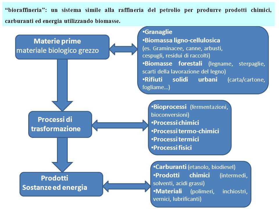 Materie prime materiale biologico grezzo Processi di trasformazione Prodotti Sostanze ed energia Granaglie Biomassa ligno-cellulosica (es. Graminacee,