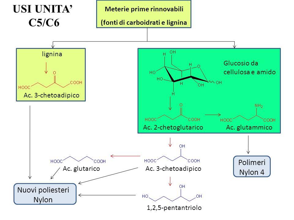 USI UNITA C5/C6 Meterie prime rinnovabili (fonti di carboidrati e lignina lignina Glucosio da cellulosa e amido Ac. 3-chetoadipico Ac. 2-chetoglutaric