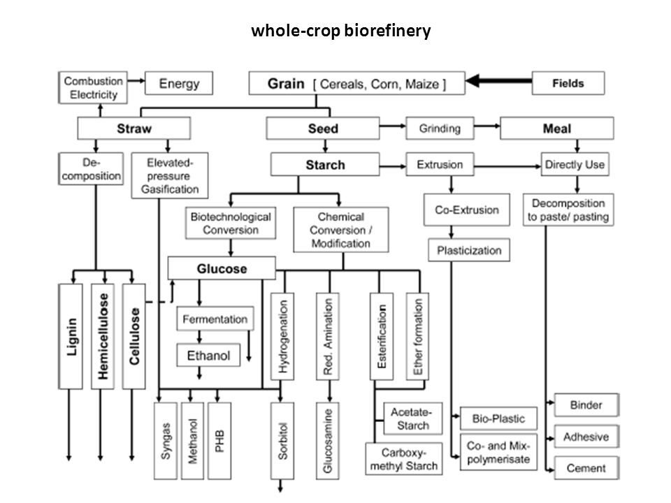 whole-crop biorefinery