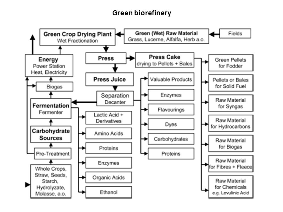 Green biorefinery